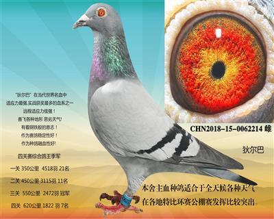 玉香鸽业育种中心