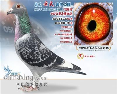 惠翔中国红39名。同父母