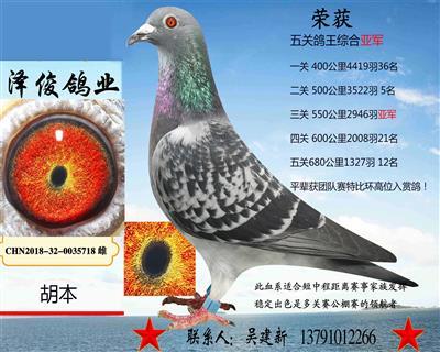 胡本5718