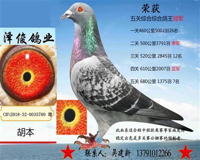 胡本5780