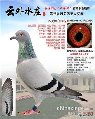 云外水庄4关综合21