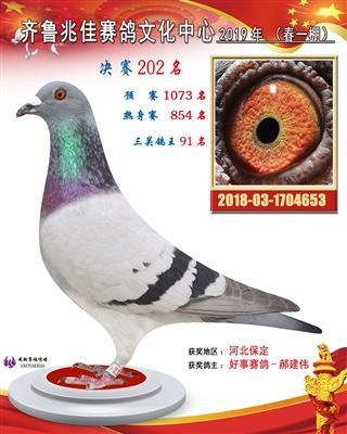 兆佳202