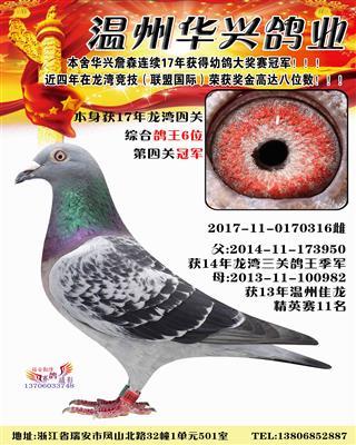 2017龙湾四关6名0170316