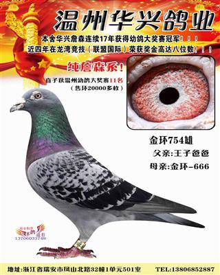 华兴金环754