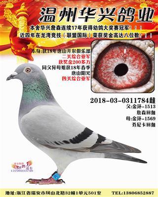 2018唐山开尔二关综合亚军