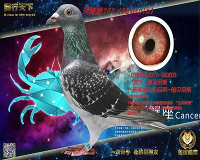 天蝎座(哈贝尼斯203)