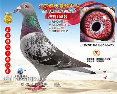 江苏健大赛鸽中心春第二届决赛108名