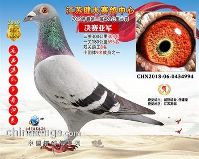江苏健大赛鸽中心春第二届决赛亚军