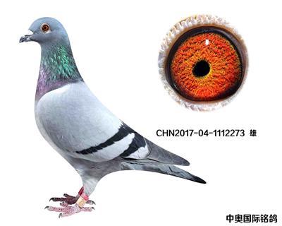 CHN2017-04-1112273