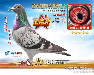 戈马利19年春福禄缘公棚决赛26名(售)