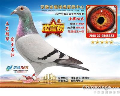 戈马利19年春福禄缘公棚决赛78名(售)