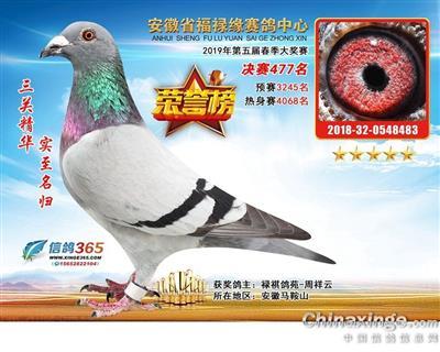 19年安徽福禄缘公棚决赛477名(售)