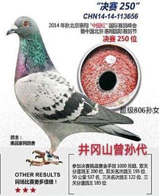 """14年惠翔""""中国红""""决赛250名"""