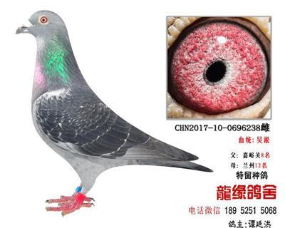 ��缘吴淞3