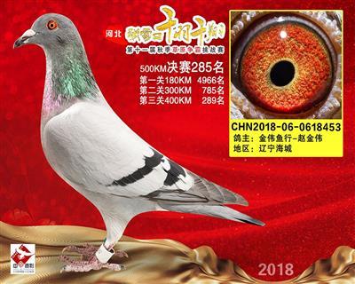 张家口千羽千翔草原争霸挑战赛285名