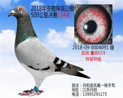 18年安徽珠城500公里决赛534名