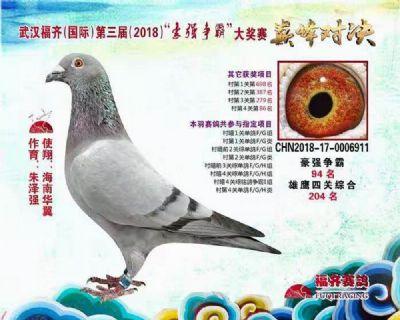 18年武汉福齐寄养棚四关鸽王204名