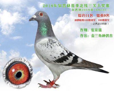 18年夏季泉晋杯三关综合11名