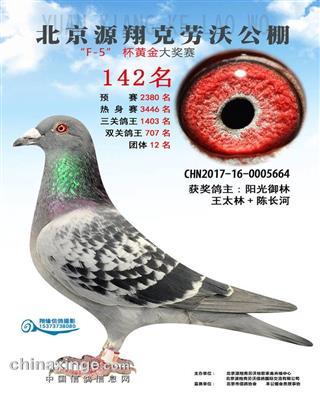 17年北京克劳沃F-5杯黄金大奖赛142