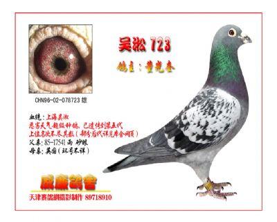 吴淞723