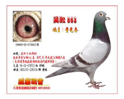 吴淞863