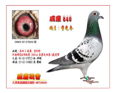 吴淞840