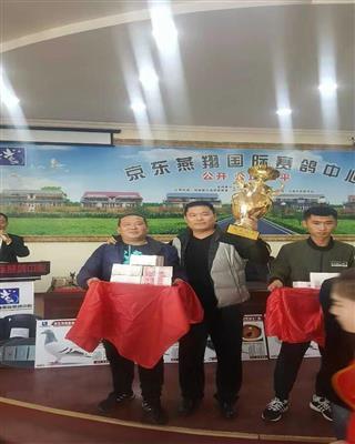 2017京东燕翔三关鸽王亚军