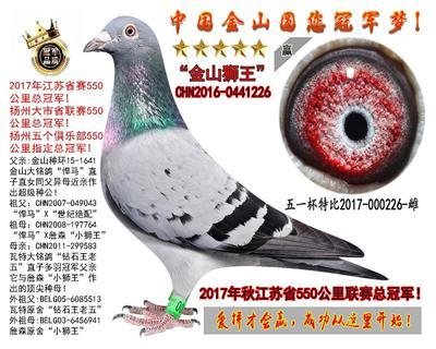 江苏省550公里省联赛总冠军!