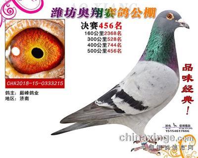 奥翔决赛456(已售)