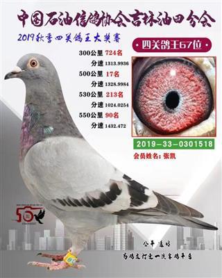 2019年秋季四关综合67位