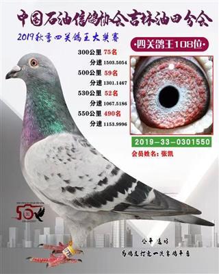 2019年秋季四关综合108位