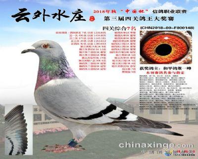 云外水庄四关王7
