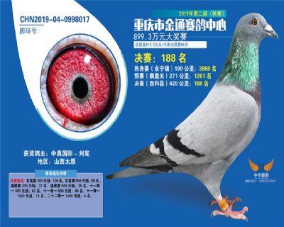 重庆金通决赛420KM188名!