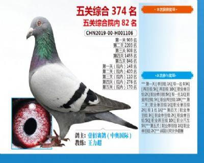 威力庄园五关综合鸽王82名!