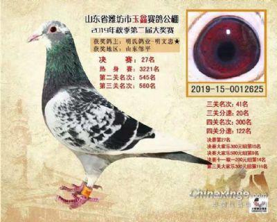 2019年潍坊玉鑫公棚决赛27名