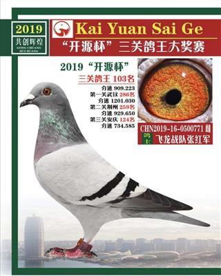 """""""开源杯""""三关鸽王大奖赛"""