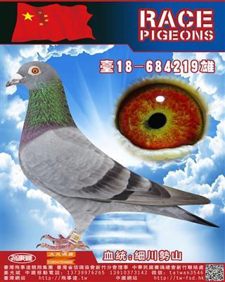 细川势山系219