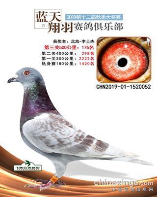 2019年内蒙蓝天翔羽公棚决赛176名