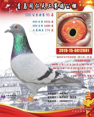 2019年山东同仁天工决赛95名