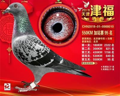 2019年津福加站赛95名