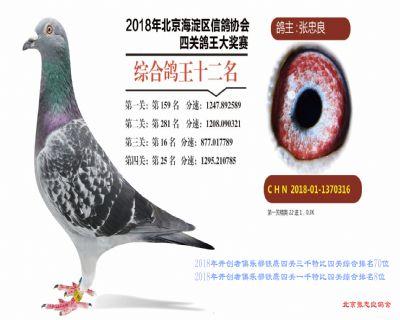 2018年海淀开创四关综合12位