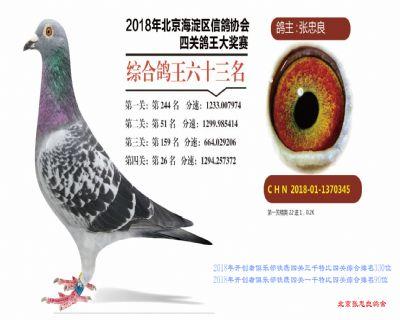 2018年海淀开创者四关综合63位