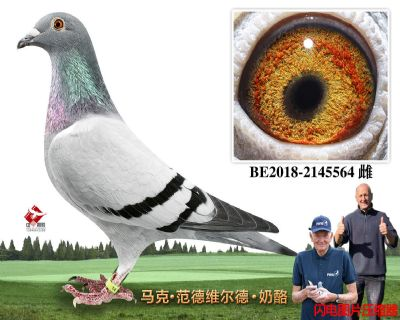 62-BE2018-2145564