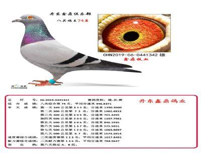 八关鑫鼎铁血74