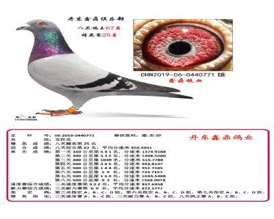 八关鑫鼎铁血67
