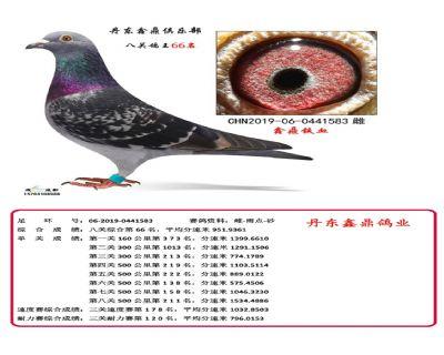 八关鑫鼎铁血66