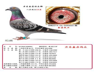 八关鑫鼎铁血64