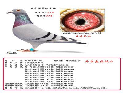 八关鑫鼎铁血51