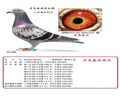 八关鑫鼎铁血48