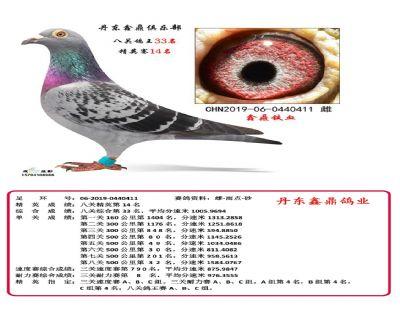 八关鑫鼎铁血33